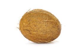 Kokosnuss Diät